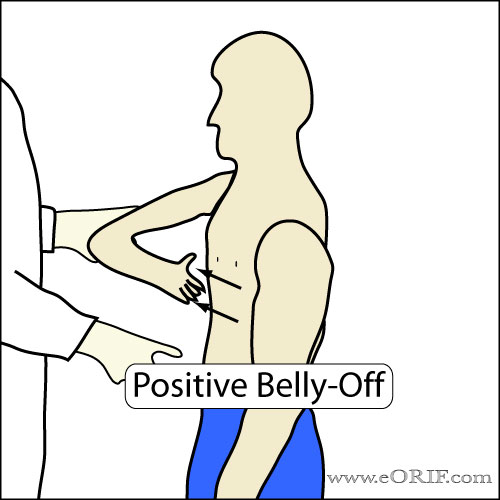 Belly-Off Sign
