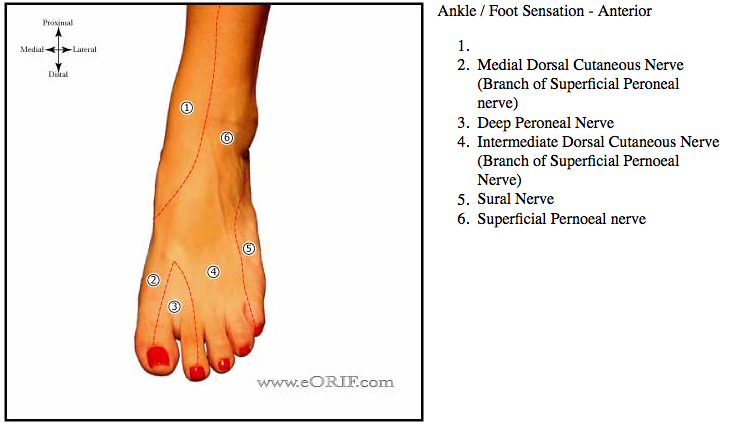 How To Stop Foot Pain For Good images