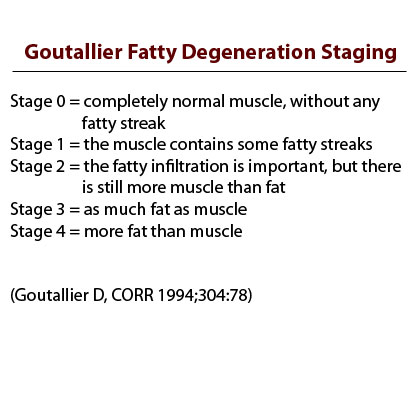 Goutallier fatty degeneration stagin